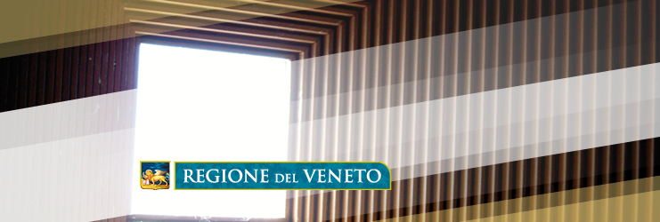 Public procurement in Veneto Region